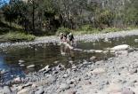 Stepping Stones, Carnarvon NP