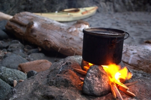 campfire_cooking